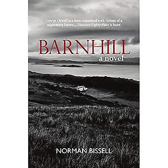 Barnhill: A Novel