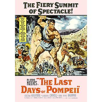 Last Days of Pompeii ('59) [DVD] USA import