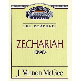 Zaccaria (attraverso i commenti della Bibbia)