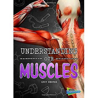 Understanding Our Muscles (Brains, Body, Bones!)