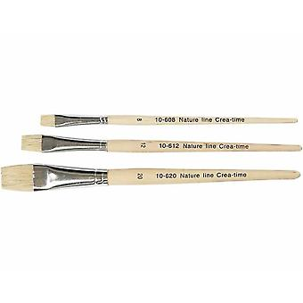3 Hog Bristle Flat Head Paint Brushes for Crafts   Kids Paint Brushes