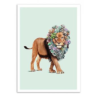 Art-poster-suckulent lejon-Jonas Loose 50 x 70 cm
