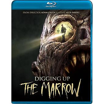 Digging Up the Marrow [BLU-RAY] USA import