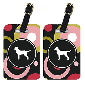 Carolines Treasures  KJ1020BT Pair of 2 Chesapeake Bay Retriever Luggage Tags