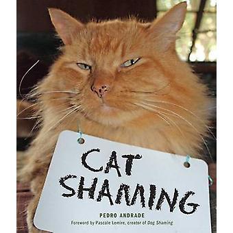 Gato Shaming Pedro de Andrade - livro 9781449478391