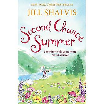 Second Chance Summer: Cedar Ridge 1