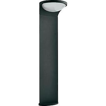 Solar outdoor free standing light 1.5 W Warm white Philips 178099316 Dusk Anthracite