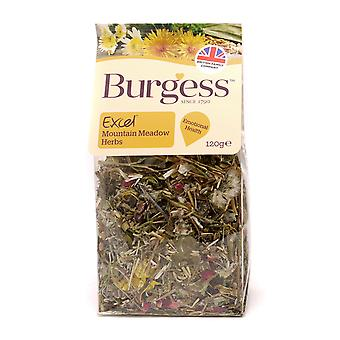Burgess Excel Snacks Mountain Meadow Herbs 120g (Pack of 5)