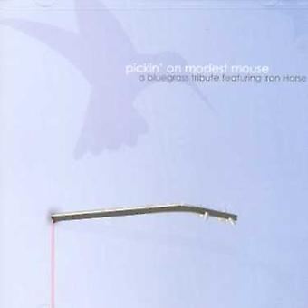 Pickin' on Modest Mouse - Pickin' on Modest Mouse [CD] USA import