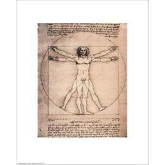 Vitruvian Man 1492 affisch Skriv av Leonardo da Vinci (16 x 20)