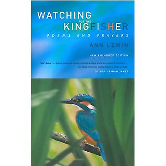Watching for the Kingfisher - Poems and Prayers by Ann Lewin - 9781853