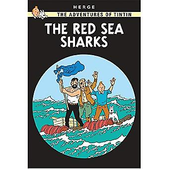 Red Sea Sharks (The Adventures of Tintin)