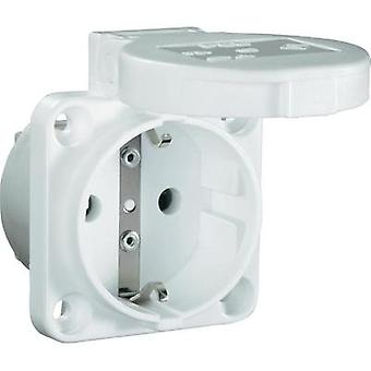 Add-on socket IP54 White PCE 601.4