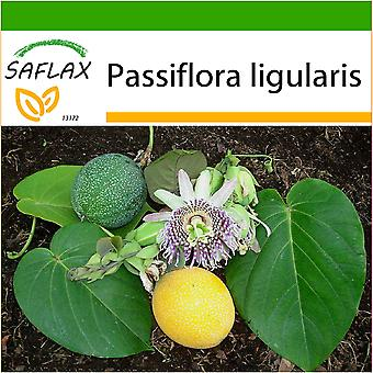 Saflax - 20 seeds - With soil - Sweet Granadilla - Grenadelle - Granadilla - Granadilla - Süße Granadilla
