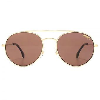 Carrera 131 Metal Round Sunglasses In Gold Havana Burgundy Polarised