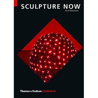 Sculpture Now by Anna Moszynska - 9780500204177 Book