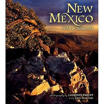 Nouveau-Mexique sauvages & belle