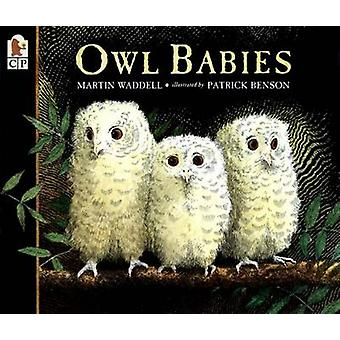 Owl Babies by Martin Waddell - Patrick Benson - 9780763617103 Book