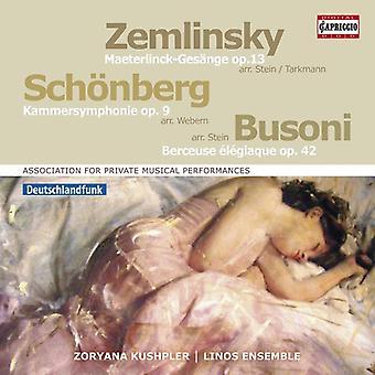 Busoni / Kushpler - Association Private Musical Performances [CD] USA import