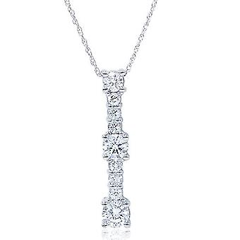 1ct echte diamant 14K White Gold Pendant Necklace
