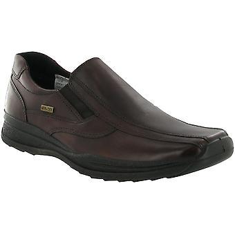 كوتسوولد رجالي جلد نونتون براون الأحذية عارضة للماء