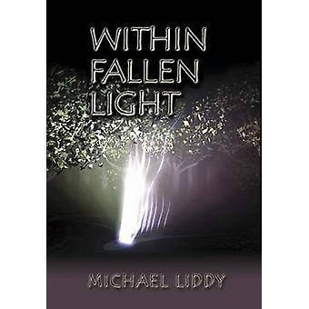 Within Fallen Light by Michael Liddy - 9781920785307 Book