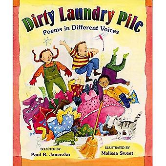 Dirty Laundry Pile: Poems in Different Voices