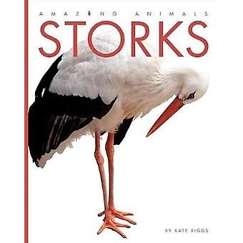 Amazing Animals - Storks by Kate Riggs - 9781628323665 Book