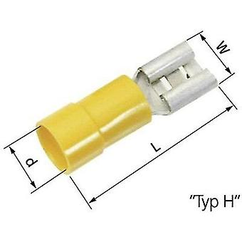 Blade receptacle Connector width: 9.5 mm Connector thickness: 1.2 mm