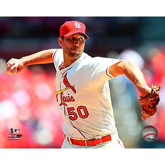 Adam Wainwright 2016 handling fotoutskrift (8 x 10)