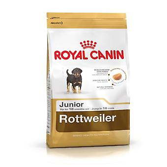 Royal Canin Rottweiler Junior (Honden , Voeding , Droogvoer)