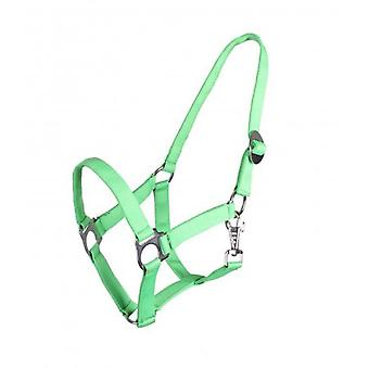 QHP Crispy Apple Adjustable Bridle Cob