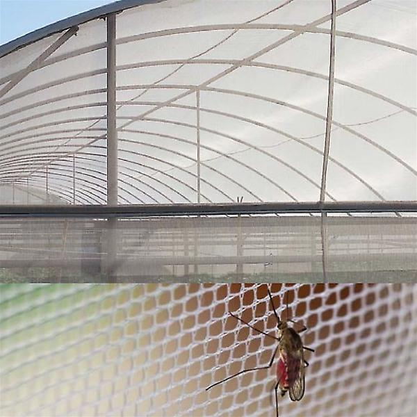 Woven Anti-Insect 6 x 6 Net - 2m x 100m