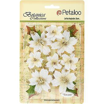 Botanica Regal Gold Poinsettia 12/Pkg-White RS5010-001