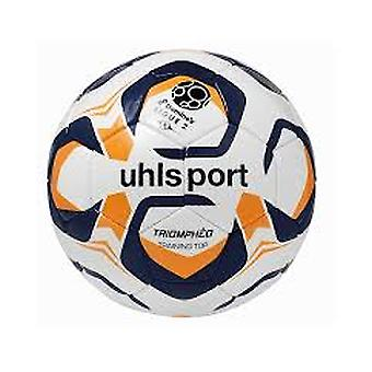 10 x Uhlsport game and training ball TRIOMPHÉO TRAINING TOP includes ball sack