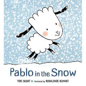 Pablo i snön