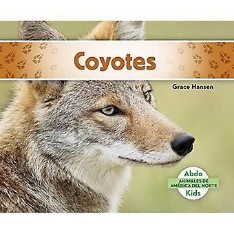 Coyotes (Coyotes) (Animales de America del Norte (Animals of North America))