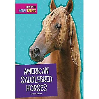 American Saddlebred Horses (Favorite Horse Breeds)