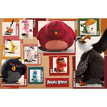 Angry Birds - Chart Poster Poster Print