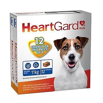 Heartgard Plus Chew Blue 12 PACK