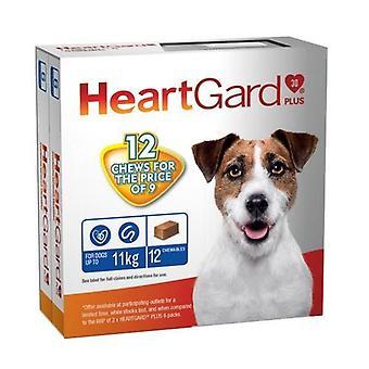 Heartgard Plus mastique azul PACK 12