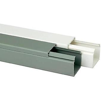 Conducto (L x W x H) 2000 x 40 x 40 mm Heidemann 09976 1 PC gris