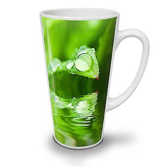 Enger Foto Natur neue weißer Tee Kaffee Keramik Latte Becher fallen 17 oz   Wellcoda