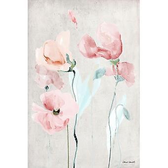 Pavot rose doux II Poster Print par Lanie Loreth