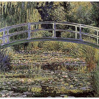 Hals-Rosen, Claude Monet, 50x50cm