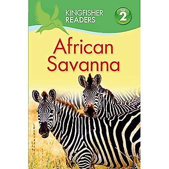 Ijsvogel lezers L2: Afrikaanse savanne