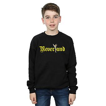 Disney Boys Tinker Bell Neverland Sweatshirt