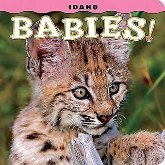 Idaho Babies! by Steph Lehmann - 9781560376842 Book