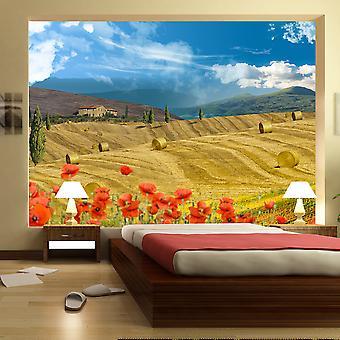 Tapet - efteråret landskab