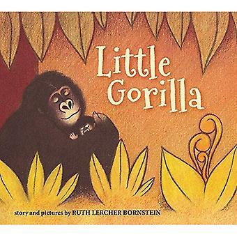 Pequeno gorila (acolchoado placa livro) [Conselho]